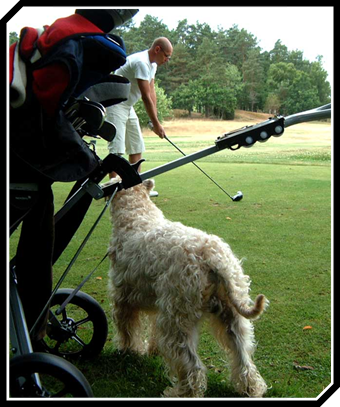 Heilyn-golf-coatch.jpg