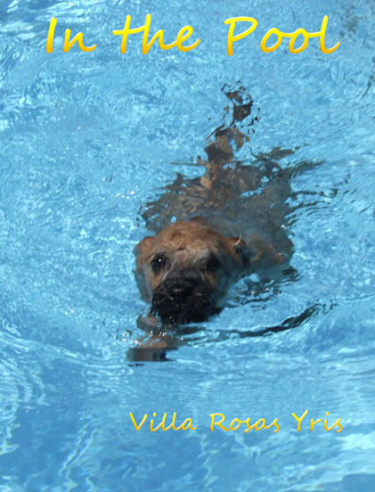 Yris-in-the-pool-2.jpg